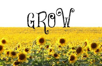 Dear Readers: Growth and Grief Resources