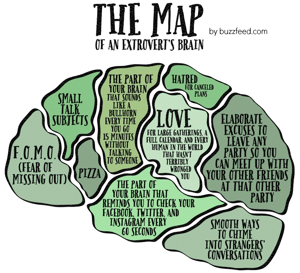 the map of an extrovert's brain