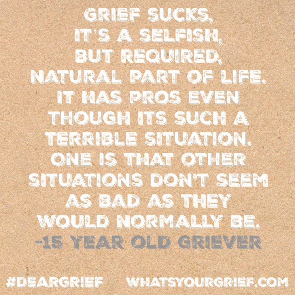 dear grief 8