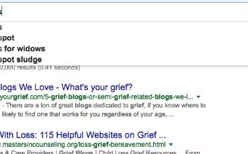 assessing online grief support