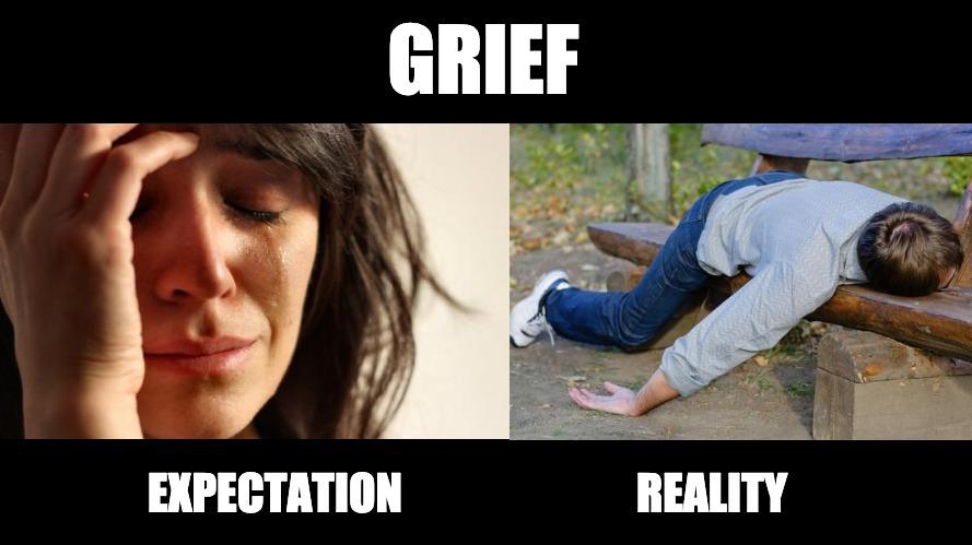 Grief Meme - Expectation vs Reality